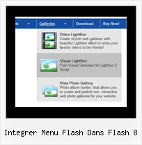 Integrer Menu Flash Dans Flash 8 Dhtml Homepage