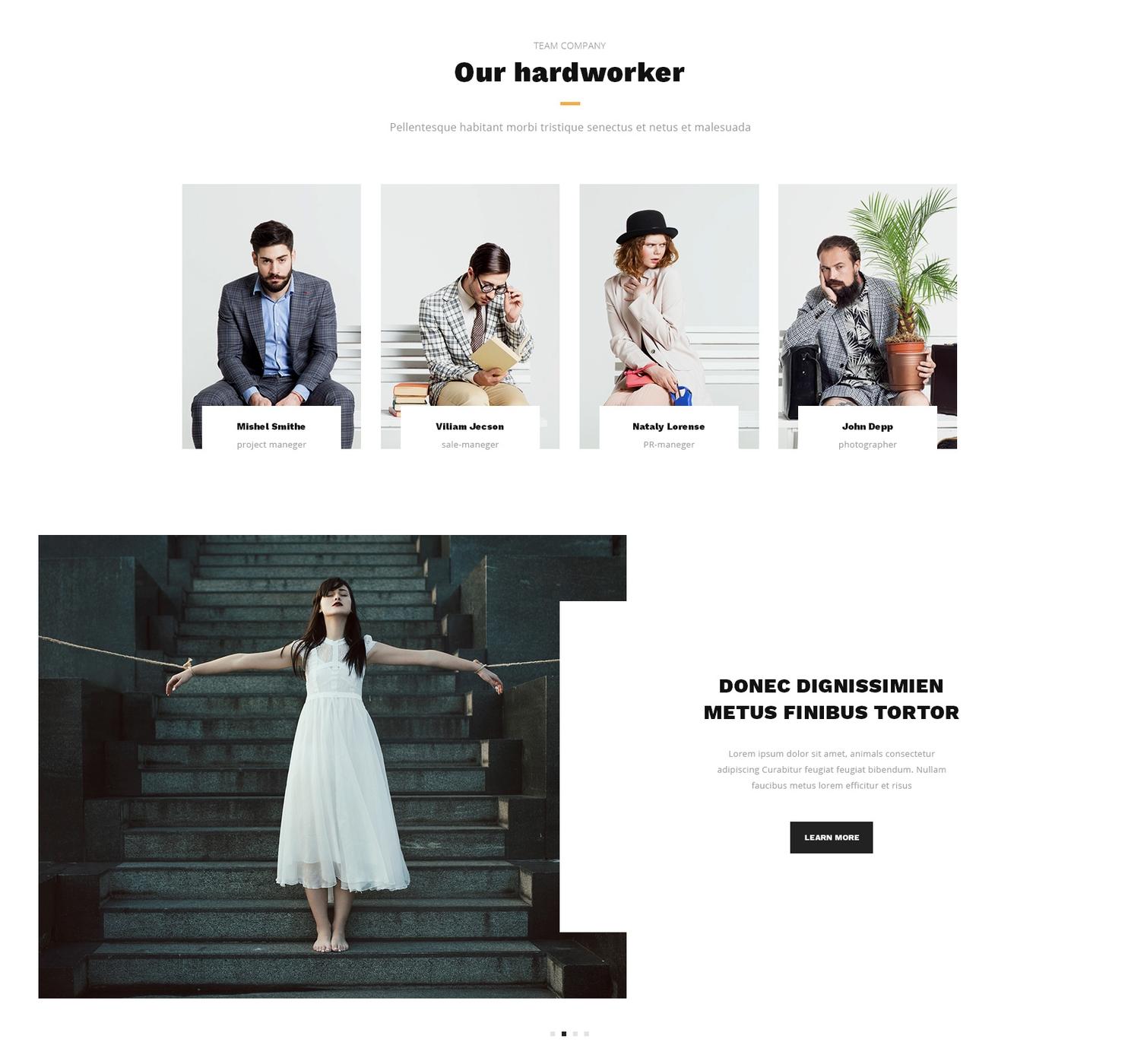 Responsive Bootstrap Design Theme