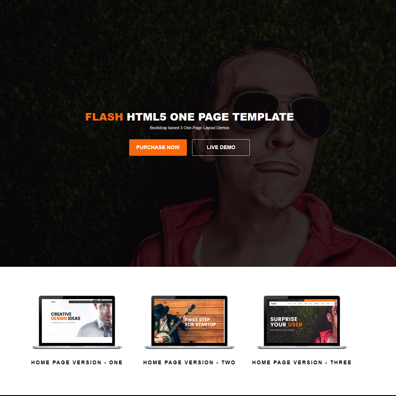 HTML5 Bootstrap Flash Themes